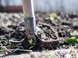 spade-garden